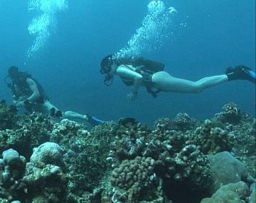 Private HD porn video: Sexo en las profundidades marinas haciendo submarinismo, nadando con delfines