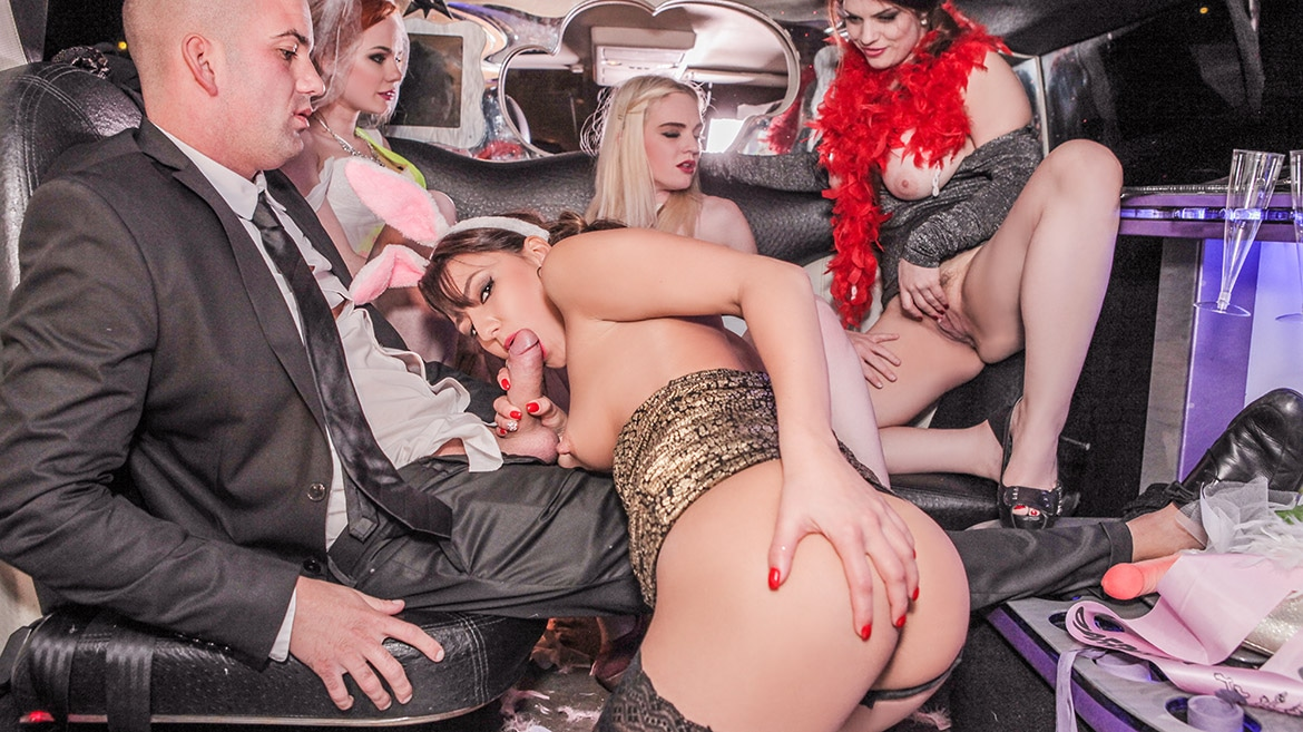 Orgy in the Limousine